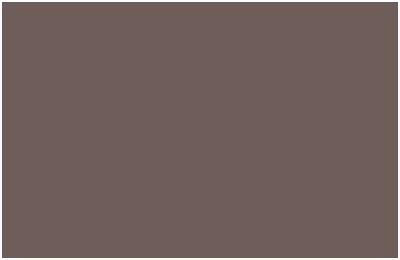 Logo NI Neurosystemische Integration